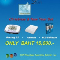ด่วนbig-promotion-benzing-g2plo-software-chip-ring-10-อัน