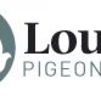 louella-pigeon-worldคลังนกพิราบชั้นดีราคาถูก