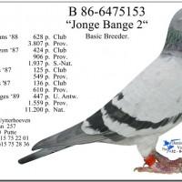jonge-bange-2-ยอดนกของโลก-โดย-van-hove-utterhoeven